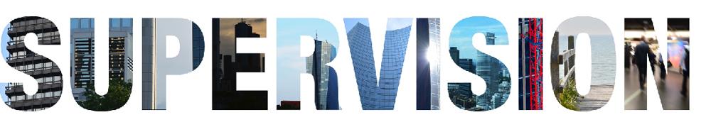 Supervision und Coaching Frankfurt