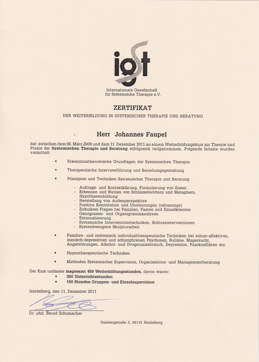 Internationale Gesellschaft für Systemische Therapie e.V. IGST