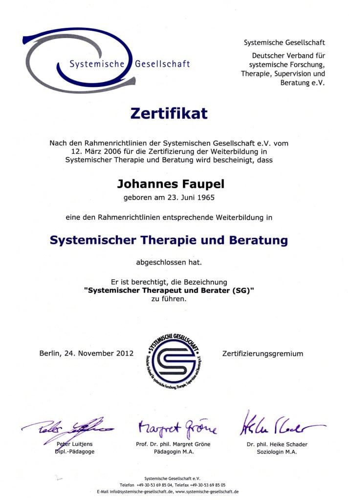 Systemische Gesellschaft SG Johannes Faupel